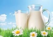 חלב בריא