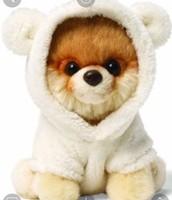 Boo bear!