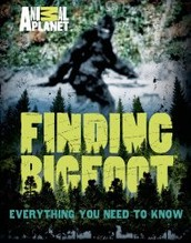 FInding Bigfoot: Everything You Need to Know by Martha Brockenbrough