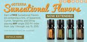 Sunsational Oils Promo Extended!!