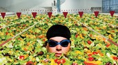 600 olympic pools filled with waste food