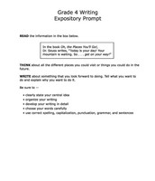 Reduced to One Expository Prompt