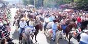 Public Festival of Palmares