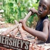 Child prouducing Hershey chocolate