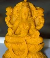 Goddess Haridra Lakshmi
