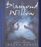 Diamond Willow by Helen Frost