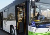 קוי האוטובוסים