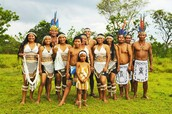 The Amerindians