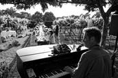Piano Paul, klein en sfeervol