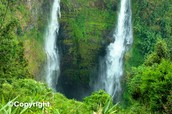 5  Bolaven Plateau and Tad Fane Waterfall