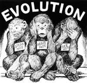 "The ""Monkey"" Trials"