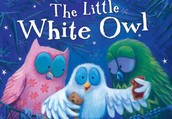 The Little White Owl By Tracey Corderoy Illustrated by Jane Chapman