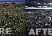 Devastation of Forests