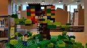 Magic Tree House - Winner