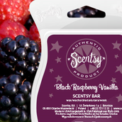 Black Raspberry Vanilla Scentsy Bar