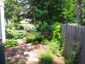 Landscaped Yard