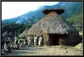 Aztec Houses