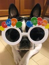 Birthday Celebration for Elena