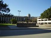 Houston Community College- Texas