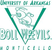 #1 University of Arkansas at Monticello