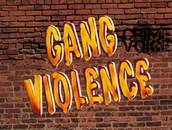 Gang Violence