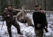 Quand le public et l'international unissent leurs forces pour recruter des chasseurs de loups !