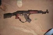 Poacher Gun