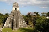 La Maravillosa Tikal Temple