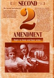 Bill 2; Right to bear arms