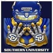 Southern A&M University