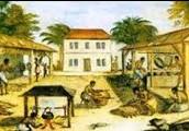 South Carolina Colony - Established 1663