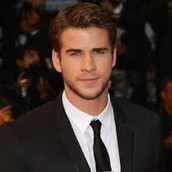 Mocking jay's, Liam Hemsworth starring as Alex Sheathes!