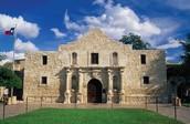 Alamo Texes