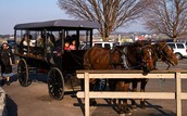 Amish School Bus
