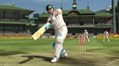 Cricket How its good for you.