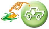 Food= Bio-fuel