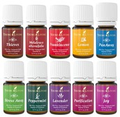 Just What are Essential Oils anyway?