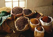 Ally types of coffee used to make your drink the best