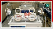 A Neonatal Incubator