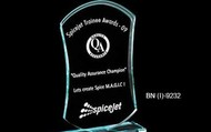 Acrylic-trophy