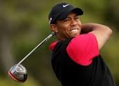 6º Tiger Woods Joueur de Golf