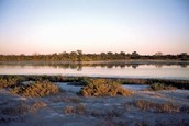 Flat Chaco plain