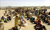 Role of The Organization in Darfur