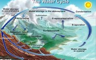 Biological Science Cycles