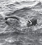 The Channel Swim