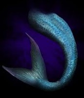 A mermaids real