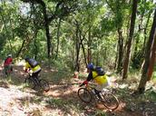 Be a Mountain Biker!