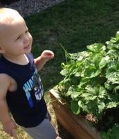 At our garden!