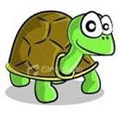 Tony the Tortoise