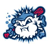 Blowfish Baseball Reading Challenge